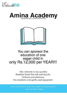 Amina Academy poster